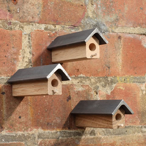 Beesnees - solitary bee nesting homes (bees not included, sorry)