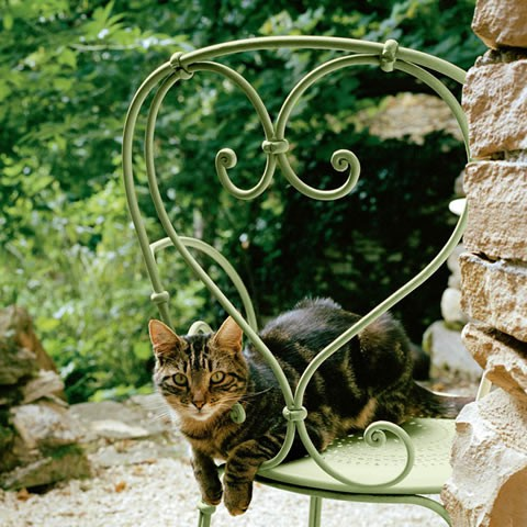 1900 armchair in Willow Green (avec chat)