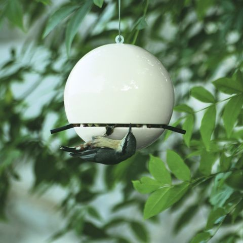 Peanut feeder in white (Blue Tit not included)