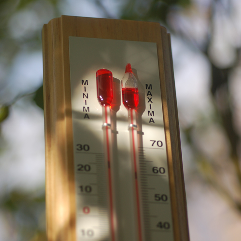 Maximum-minimum greenhouse thermometer