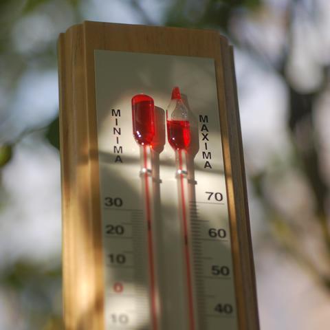 Maximum-minimum greenhouse thermometer