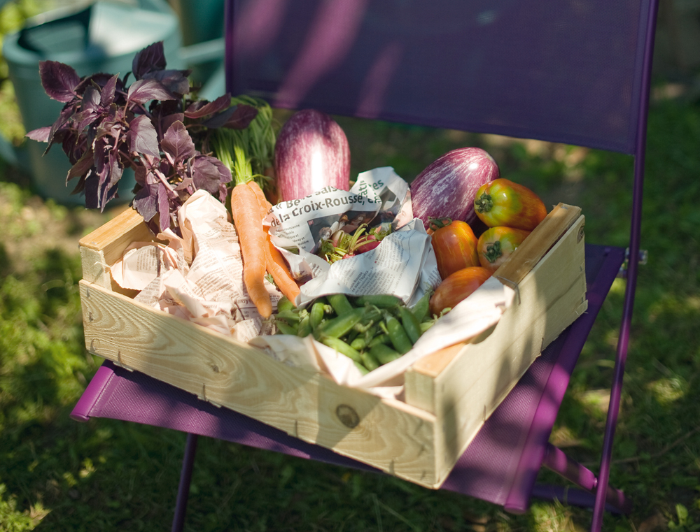 Plein Air chair in Aubergine (vegetables not included)