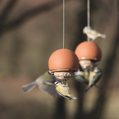 Belle bird feeder in terracotta