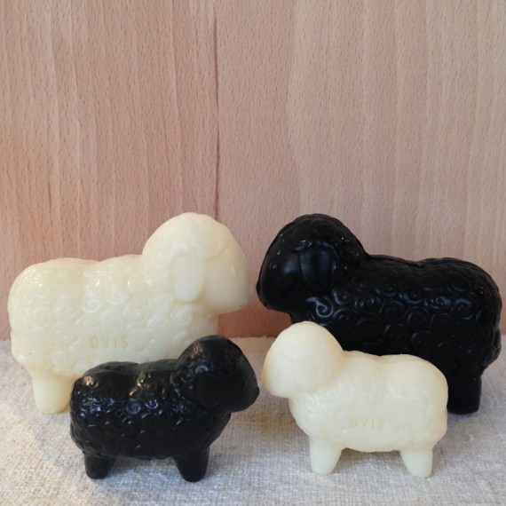 Sheep soap