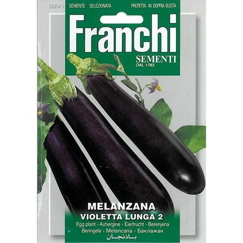 Aubergine Melanzana violetta lunga 2
