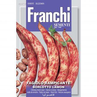 Borlotti bean 'Fagiolo lamon'