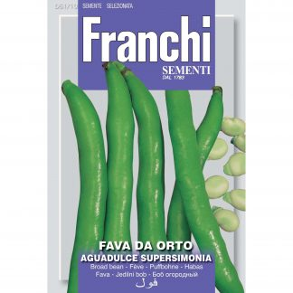 Broad Bean 'Fava aguadulce supersimonia'