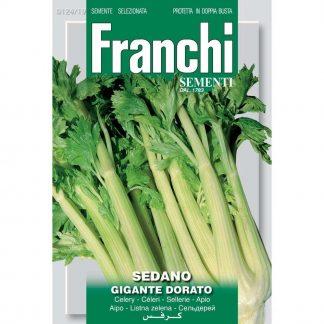Celery 'Gigante Dorato'