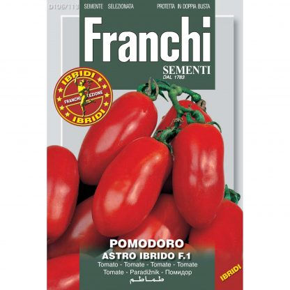 Plum tomato Scipio