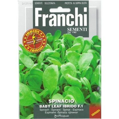 Spinach baby leaf