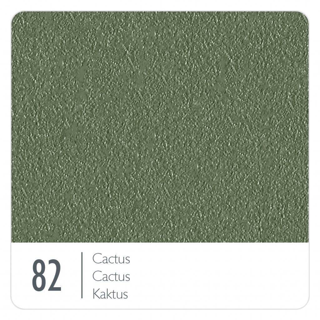 Cactus (82)